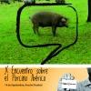 X Encuentro sobre el porcino ibérico